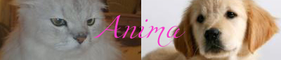 Zoologie & Animus