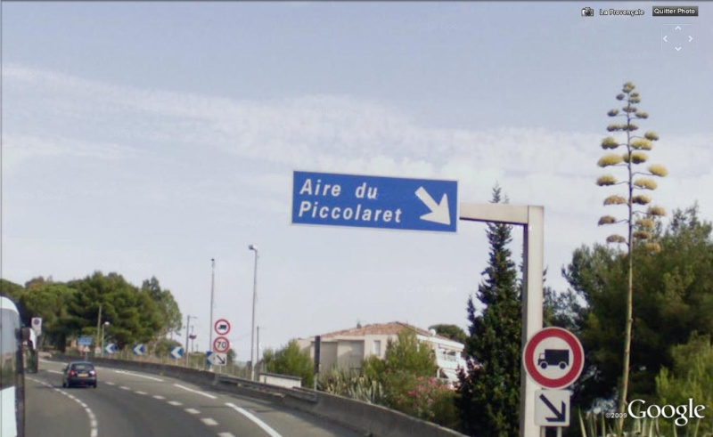 piccol10