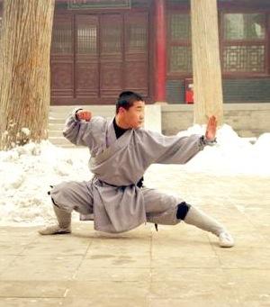 D finition d 39 un art martial du bushido et du bud for Les arts martiaux chinois