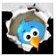 Egsoma - Twitter