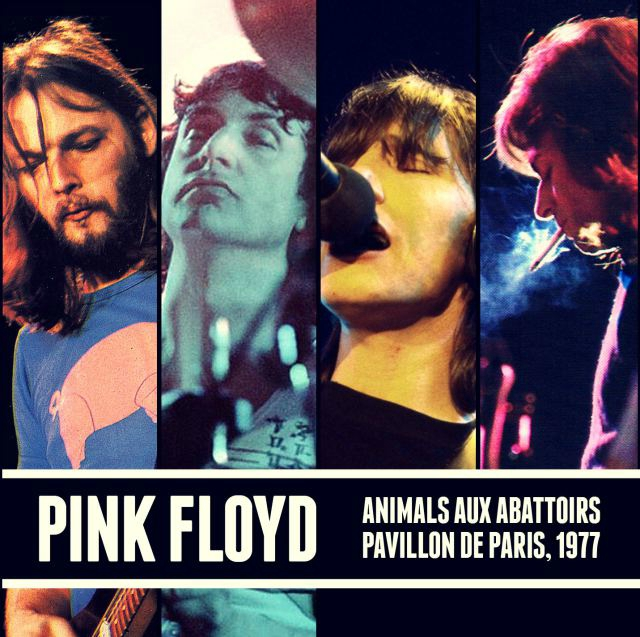 pink_f10.jpg