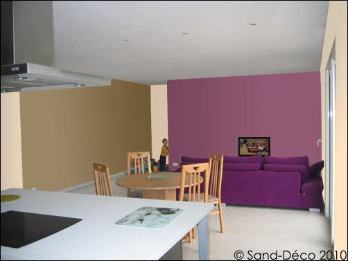 Cr er la d co de ma pi ce salon cuisine for Association de couleurs murs