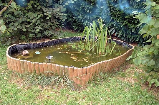 bassin poisson pas cher trouvez le meilleur prix sur voir avant d 39 acheter. Black Bedroom Furniture Sets. Home Design Ideas