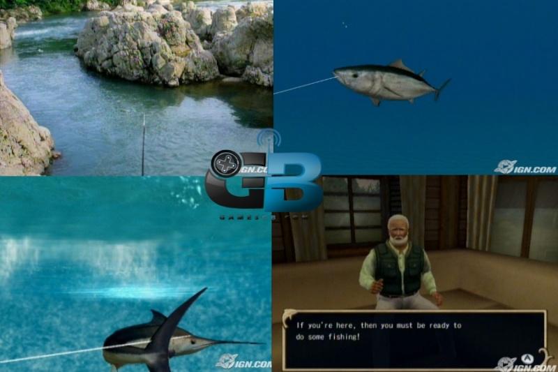 Fishing Resort Wii Pal