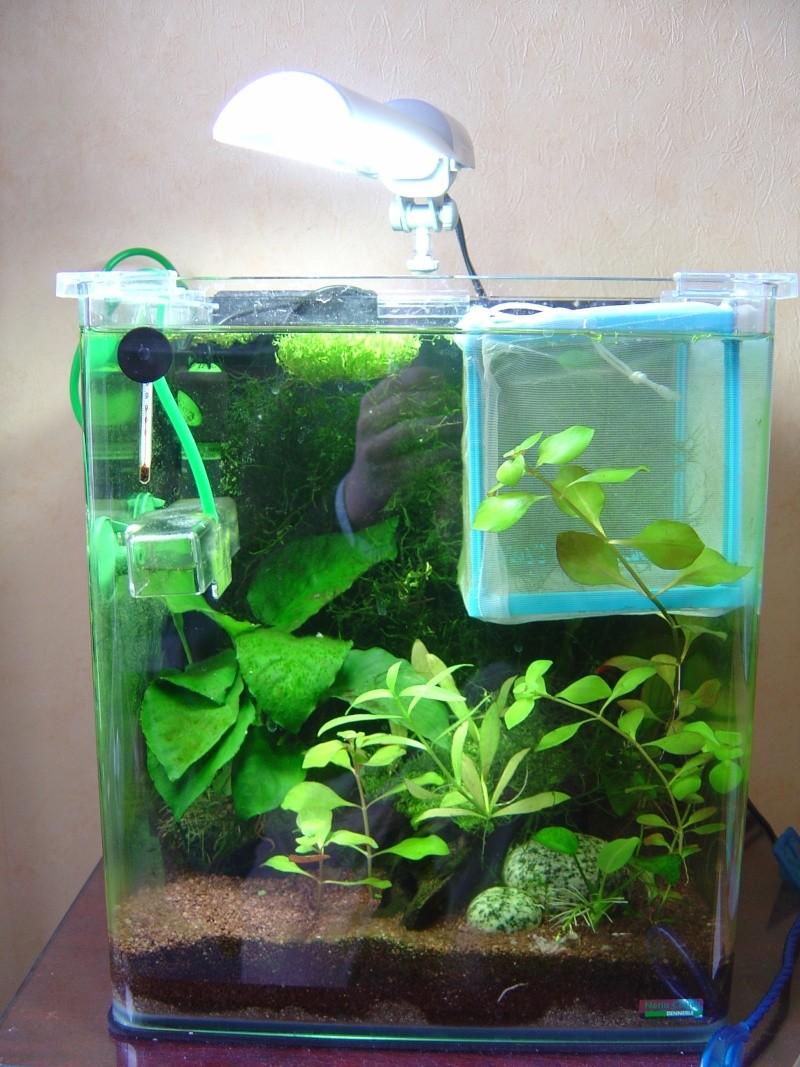 Chauffage aquarium 20l for Aquarium pas cher 50l