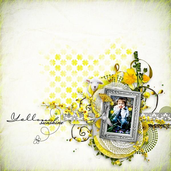 yellow11.jpg