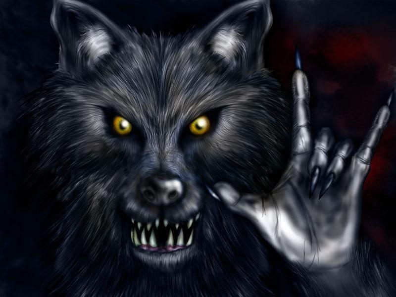dans fond ecran loup garou blackw10