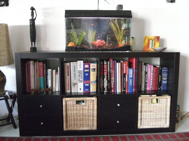 Meuble ikea et aquarium 60l for Meuble aquarium ikea