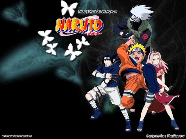 Naruto Zone Dynasty
