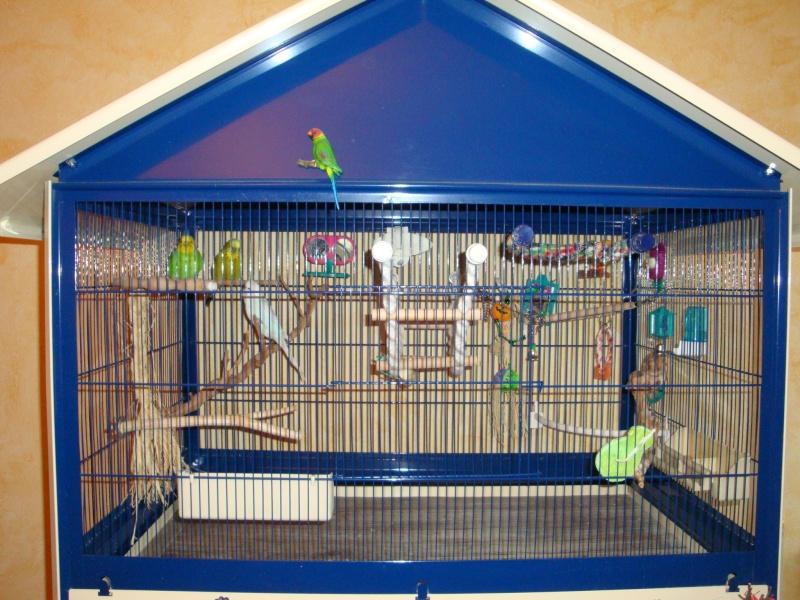 modeles cages et volieres. Black Bedroom Furniture Sets. Home Design Ideas