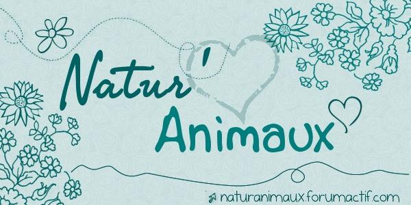 Natur'Animaux