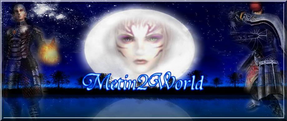 Metin2World