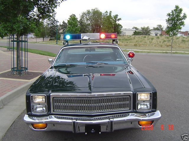 Plymouth gran fury 1976 for 1976 plymouth fury salon