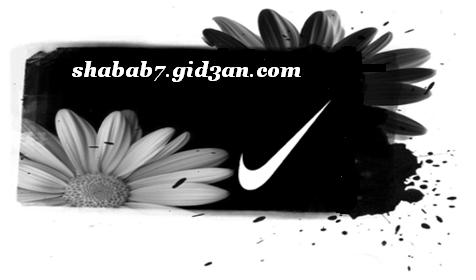 shabab7