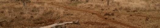 Les terres sèches