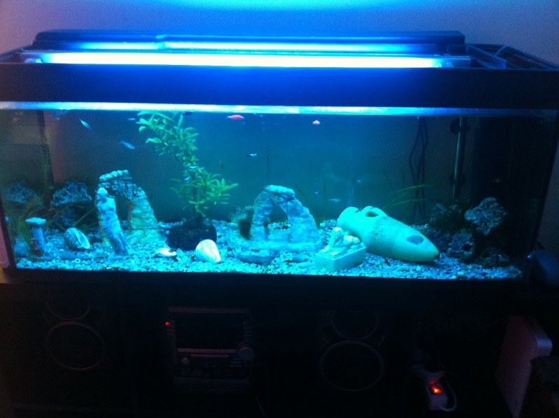 Recherche tube neon 89 46cm for Tube neon aquarium