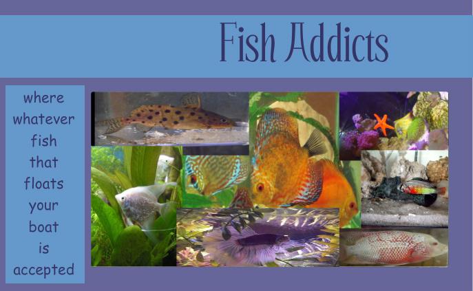 Fish Addicts
