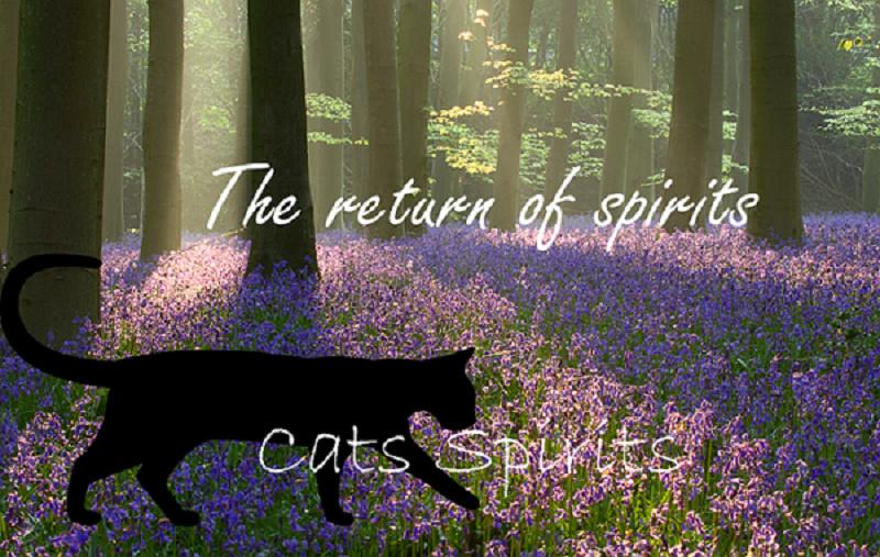 The return of spirits